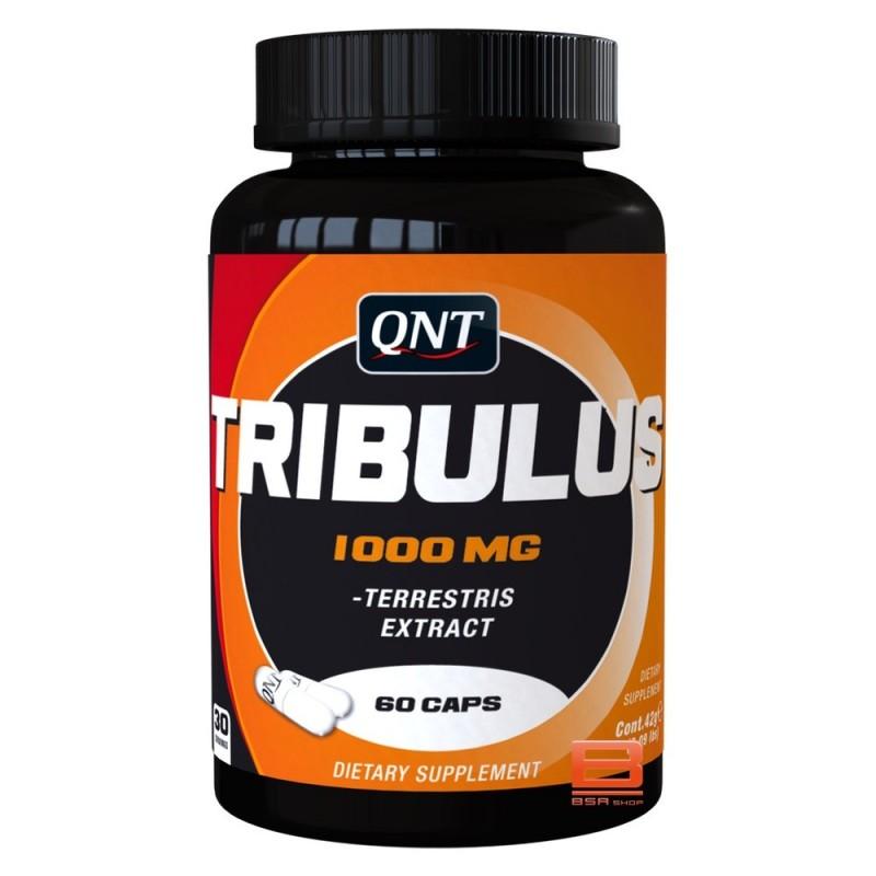 QNT TRIBULUS Stimulateur Hormonaux